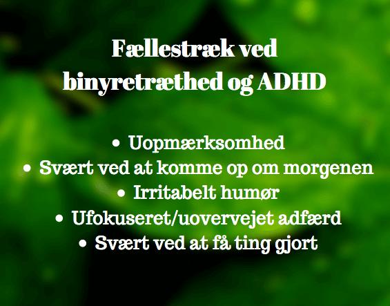 Psykolog ADHD København Det Sunde Sind