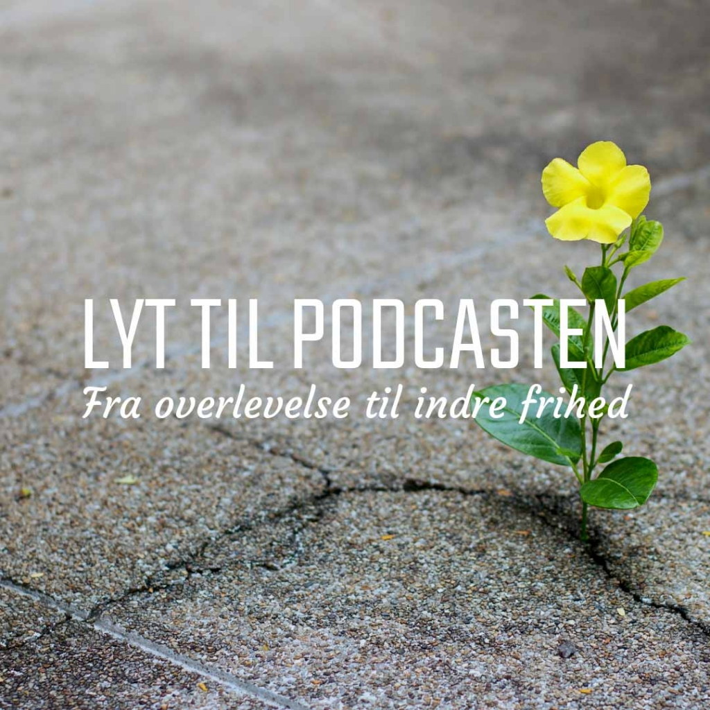 Det Sunde Sind, Lyden af et bedre liv, Podcast med Iben Larissa Jørgensen